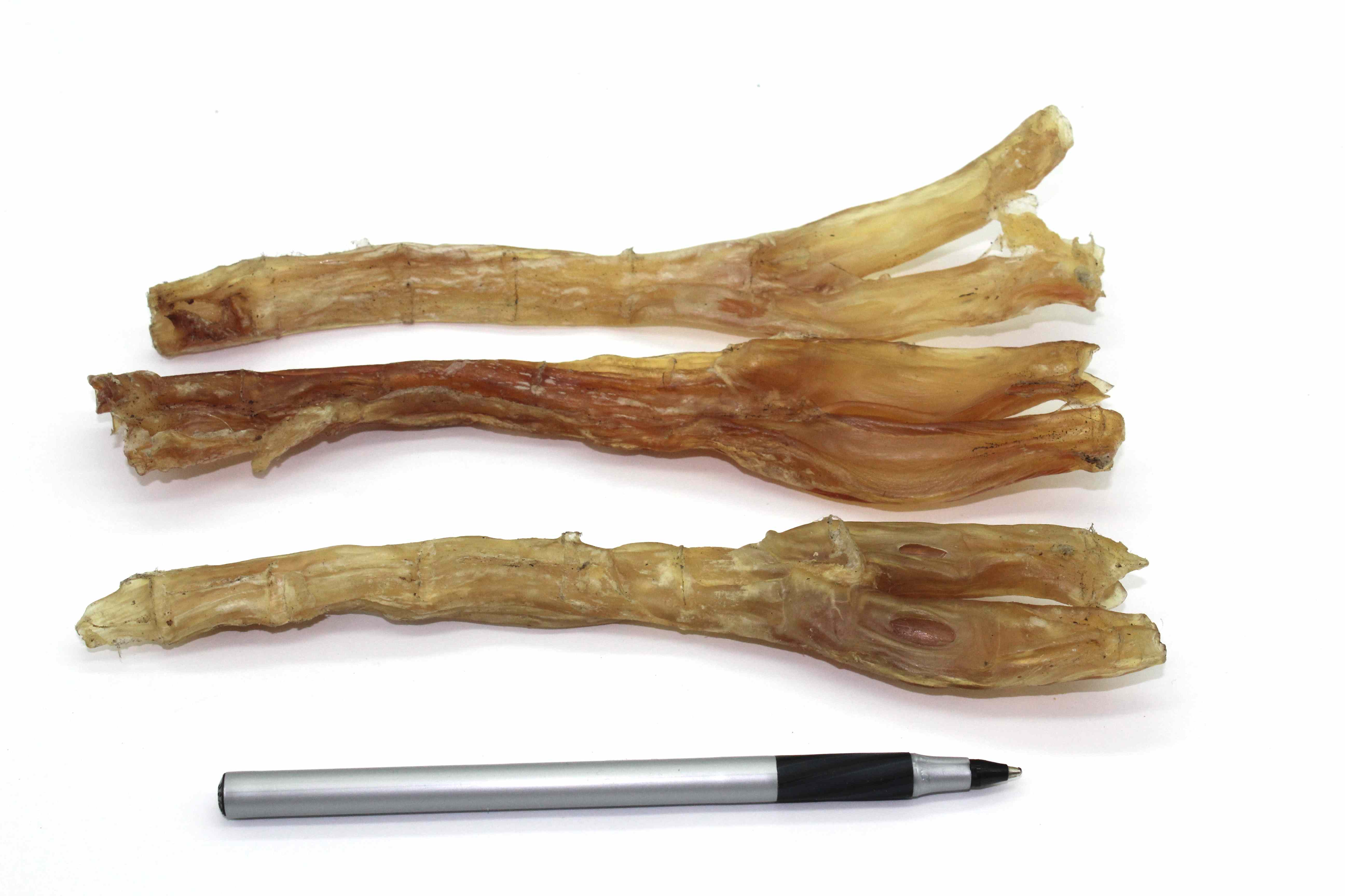 buffalo tendon dental chew 50 6 9 long each. Black Bedroom Furniture Sets. Home Design Ideas